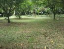 Dijual Tanah Strategis Di Tonjong Bojong Gede, Bogor (1)