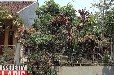 Rumah Kebun Bumi Pertiwi - Cilebut Bogor